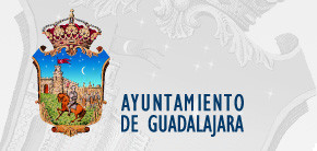 Guadalajara City Council